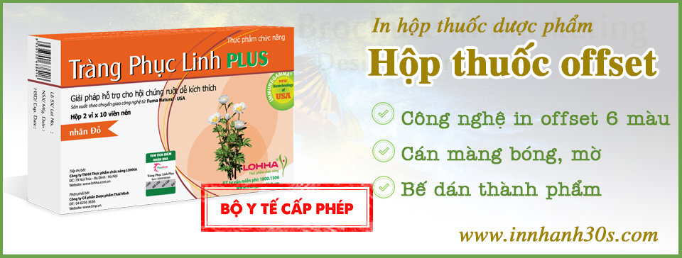 in-hop-thuoc-gia-re-tphcm
